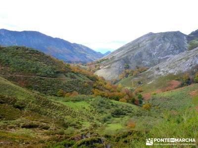 Hayedos Parque Natural de Redes;bola del mundo madrid ruta de carlos v puente de octubre